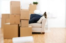 Finding A Leader During Your Domestic Removals